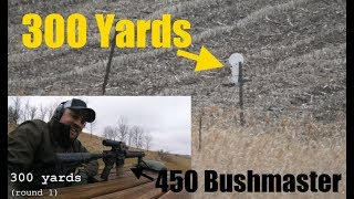 450 Bushmaster at 200 & 300 Yards
