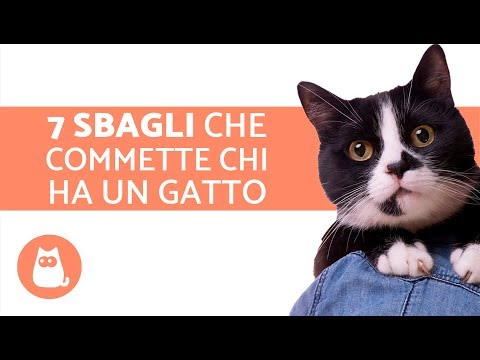 Analisi su vermi a bambini di video
