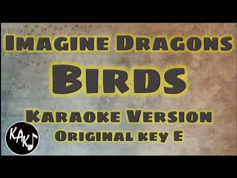 Imagine Dragons - Birds Karaoke Lyrics Instrumental Cover Original Key E