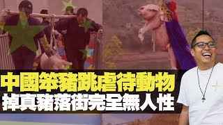 中國笨豬跳虐待動物 掉真豬落街完全無人性 (D100 上綱上線) bji 2.1