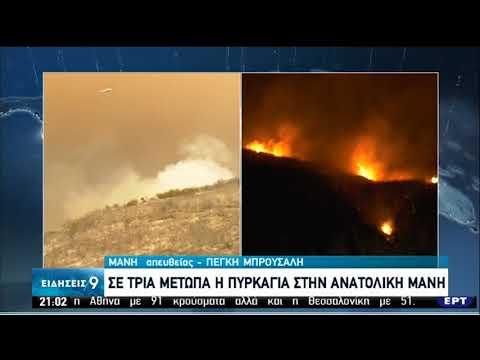 Πυρκαγιά στη Λακωνία – Εκκενώθηκαν πέντε οικισμοί | 22/08/20 | ΕΡΤ