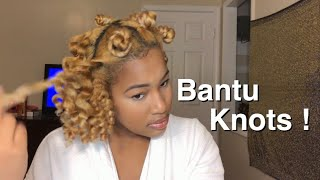 How To Get Perfect Bantu Knots|Results On Dry Natural Hair|IT'SCOZYY