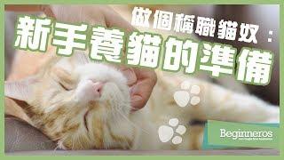 【寵物教學】做個稱職貓奴:新手養貓的準備|Beginneros