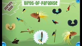 Birds of Paradise Journey Book guide!