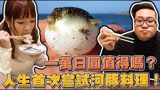 【Joeman】一萬日圓值得嗎?人生首次挑戰河豚料理!ft.咪妃