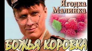 Божья коровка - Ягодка - малинка / Ladybird - Berry-Raspberry