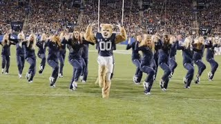 Everyone Is Going Crazy Over This College Mascot's Dance Moves