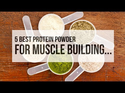 5 Best Protein Powder for Muscle Building...