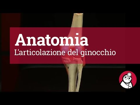 Video di esercizi con lame osteocondrosi