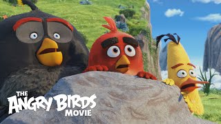 THE ANGRY BIRDS MOVIE   Official Theatrical Trailer HD
