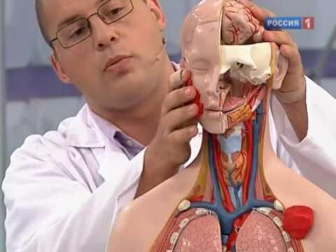 Гемангиома. О самом главном. Программа о здоровье на Россия 1