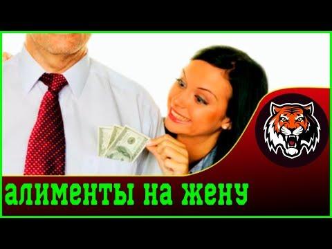 Платить алименты на бывшую жену   Ирина Волынец Алименты бывшим супругам