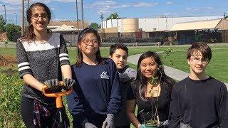Environmental Stewardship Project-Based Learning