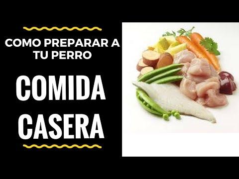 Comida Natural y Casera para Perros: 2 Recetas Muy Simples - Jose Arca
