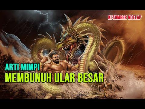 ARTI MIMPI MEMBUNUH ULAR - 6 TAFSIR MIMPI ABADI MEMBUNUH ULAR