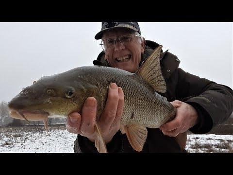 La pesca su video di Ob uno storione