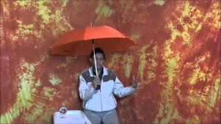 Отрывок из беседы 9 «Парный эгрегор, или Общение под зонтиком»