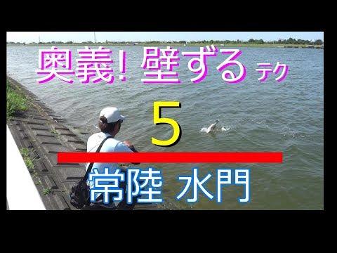 【上級者禁止】50アップでたよ!常陸利根川で水門だけ釣りしてみた結果。
