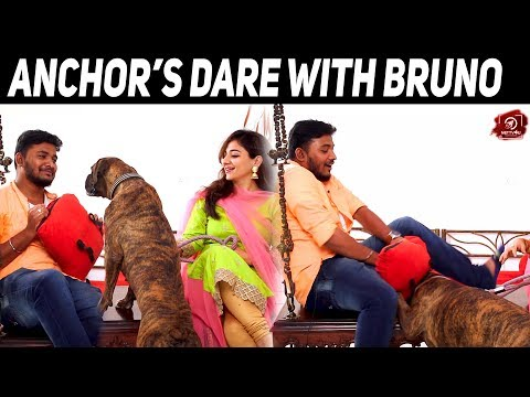 Anchor's Dare With The Dog | Exclus ..