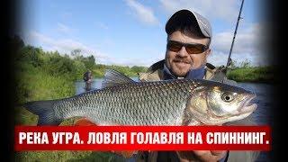 Рыбалка на угра