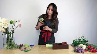 How To Get Succulents In An Arrangement