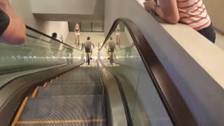 Смотреть онлайн Что будет если поехать на велике по эскалатору