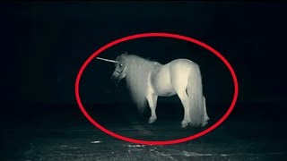 5 Mysterious Unknown Mythical Creatures Accidentally Caught On Tape