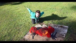 Psycho Kid Burns Lizard