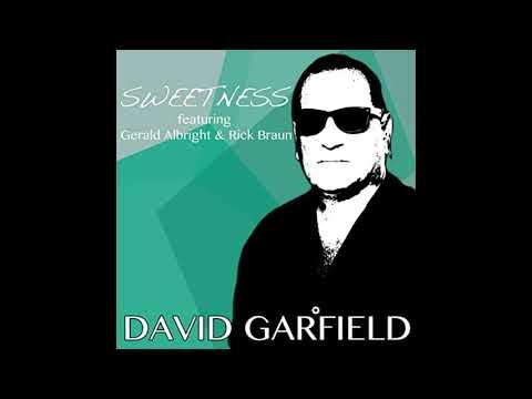 David Garfield - Sweetness Feat ( Gerald Albright & Rick Braun ) online metal music video by DAVID GARFIELD