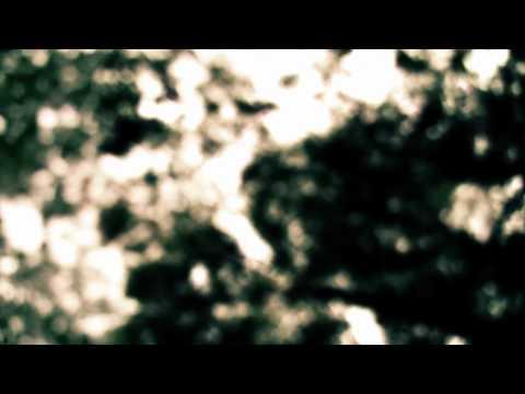 rust2dust - Stay Awake