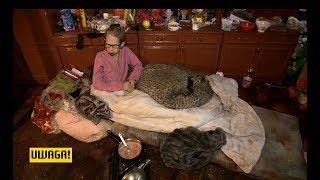 Umierała z głodu we własnym mieszkaniu (UWAGA! TVN)