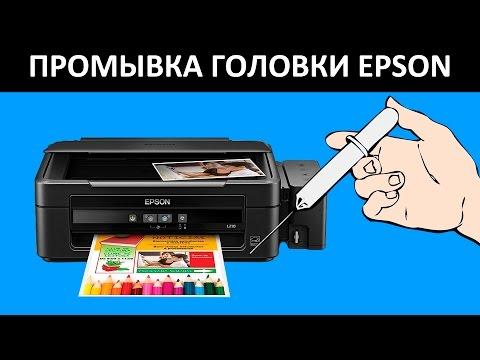 ученых-юристов называют как прочистить принтер засохла краска епсон л 100 как