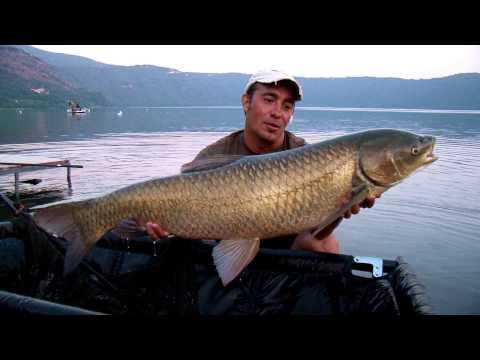 Primavera pescando su un crucian dalla barca in un cenno di parte di video