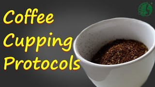 Coffee Cupping Protocols Ep 2 ECHO Asia Coffee Processing Camp 2016