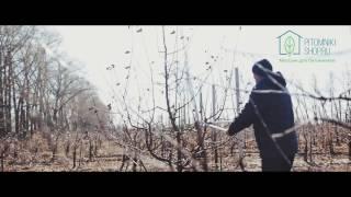 Сучкорез Felco 231 видео