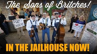 The Sons of Britches - In the Jailhouse Now (The Soggy Bottom Boys Cover) Video