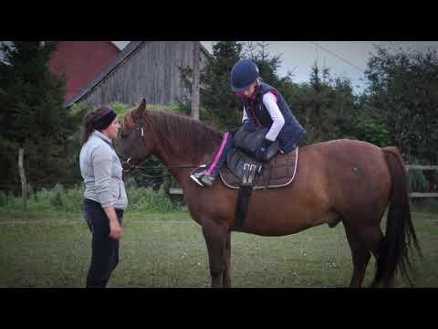 Briańsk kupić patogenu koni