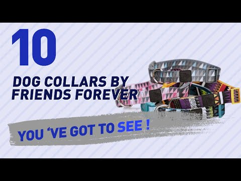 Dog Collars By Friends Forever // Top 10 Most Popular