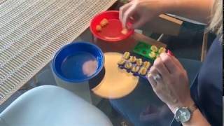 EYFS: Counting With Numicon (ages 3-5)