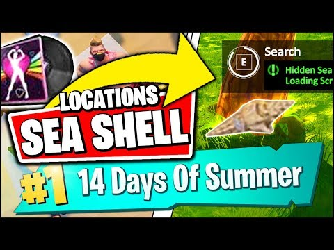 SEARCH THE HIDDEN SEA SHELL IN THE BEACH THEMED LOADING