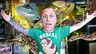 CHICAGOS MOST INSANE REPTILE PET SHOP!! | BRIAN BARCZYK