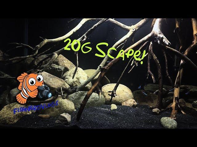How to Aquascape a Medium Sized Aquarium! My 20 gallon Tank
