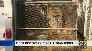 Tiger discovery: 311 call transcript