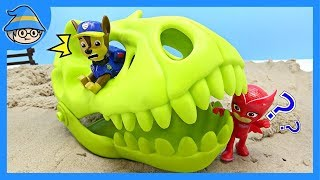 Paw Patrol is exploring the base of dinosaurs! Find the dinosaur bones.