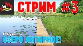 Озеро янтарное калининградская область рыбалка
