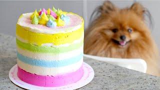 (THE BEST!!) Rainbow Dog Birthday Cake RECIPE