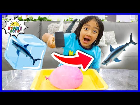 Giant Balloon Melting Ice Easy DIY Science Experiment for kids with Ryan!!!