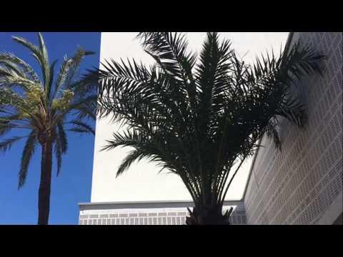 Hotel OD Talamanca Ibiza by OD Hotels