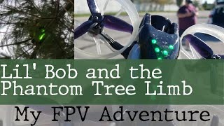 Lil' Bob, Pete, FPV, and Trees