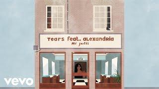 Mr Jukes - Tears (Lyric Video) ft. Alexandria